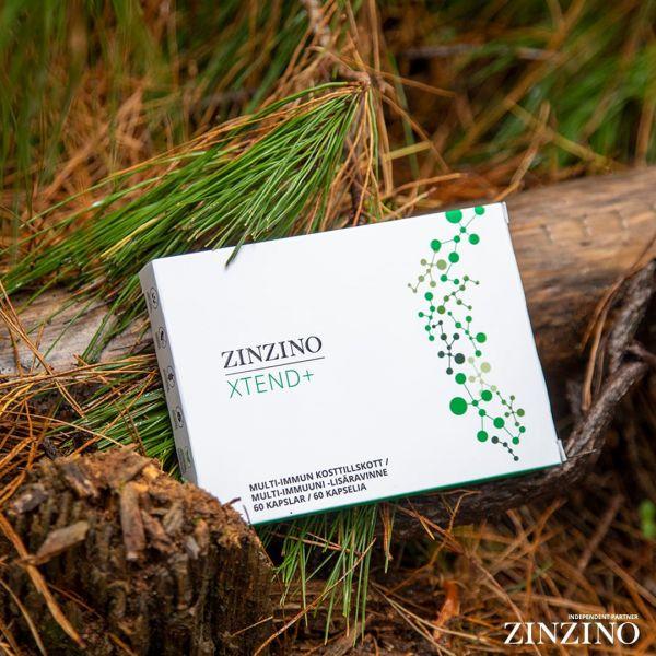 Zinzino Xtend+ Kapseln